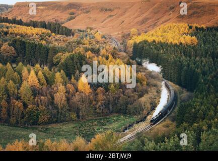 Un train à vapeur photographié qui tourne sur le North Yorkshire Moors Railway (près de Pickering) à travers quelques scènes de carte postale très automnales