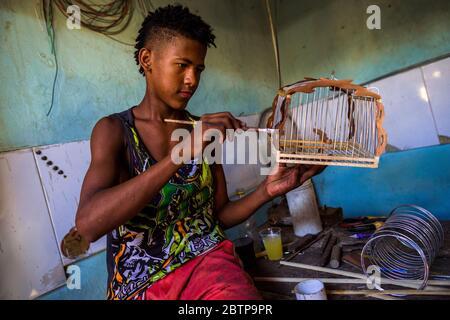 Un jeune carrossier colombien applique du vernis sur la surface en bois d'une cage sur le marché des oiseaux de Carthagène, en Colombie. Banque D'Images