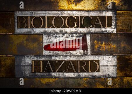 Photo de lettres authentiques authentiques formant du texte Biological Hazard sur fond de cuivre et d'or texturé argent vintage Banque D'Images