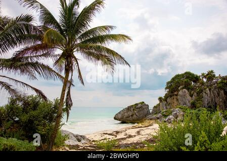Eaux turquoise cristallines sur une plage de sable mexicain sous des palmiers - attraction touristique et destination de vacances à Tulum, Mexique, Mer des Caraïbes