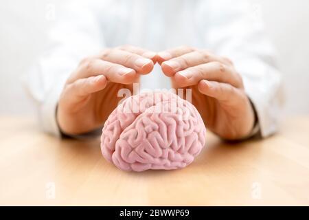 Cerveau humain recouvert de mains Banque D'Images