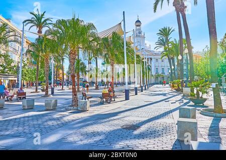 CADIX, ESPAGNE - 23 SEPTEMBRE 2019 : promenez-vous le long des palmiers sur la place Plaza de San Juan de Dios et observez les édifices de historica et de l'hôtel de ville avec