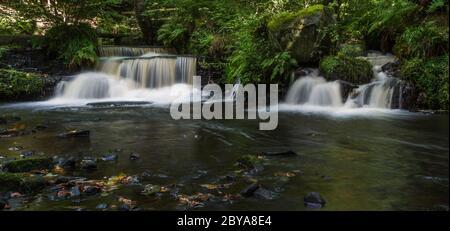 Deux cascades d'eau courante vues le long de la rivière Rivelin près de Sheffield. Banque D'Images