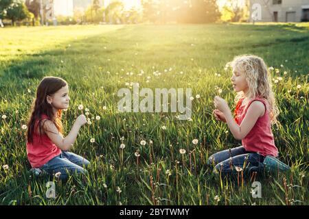 Adorables adorables filles caucasiennes soufflant pissenlits. Enfants assis dans l'herbe sur la prairie. Activités d'été pour enfants. Amis s'amuser t