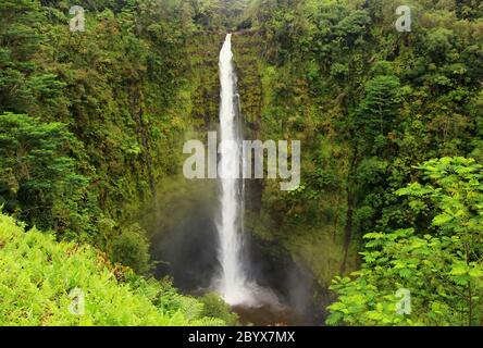 Paysage pittoresque avec cascade à l'intérieur de la forêt tropicale. Parc national d'Akaka Falls, Hawaii Big Island, États-Unis. Banque D'Images