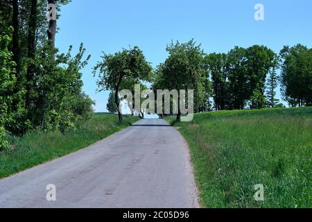 Trouvez votre chemin. Route en asphalte gris clair entourée d'arbres, d'herbe verte fraîche et de ciel bleu. Paysage de printemps avec une rue vide en Allemagne.
