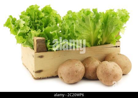 Endives fraîches et quelques pommes de terre dans une caisse en bois sur fond blanc Banque D'Images