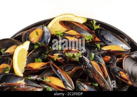 Moules marinière moules marinière, close-up, dans une casserole sur un fond blanc avec une place pour le texte