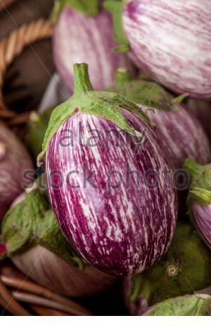 Un type d'aubergine communément appelé zebra ou aubergine graffiti. Banque D'Images