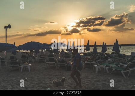 Tel Aviv/Israël-12/10/18: Femme jouant avec son chien sur les chaises longues d'une plage à tel Aviv dans la soirée juste avant le coucher du soleil Banque D'Images