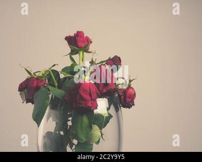 Bouquet de roses rouges garnis dans un vase en verre avec espace pour le texte Banque D'Images