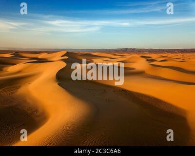 Dunes de sable dans le Sahara