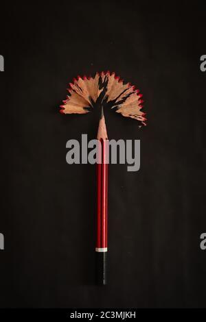 Crayon et copeaux créatifs se transformant en ampoule pour des idées intelligentes et un concept isolé sur fond noir. Genius. Banque D'Images