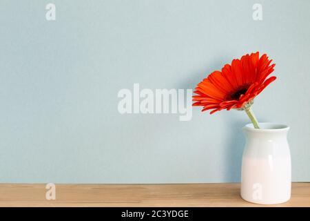 Gerbera orange sur table en bois avec fond bleu ciel. Décoration florale, espace pour le texte
