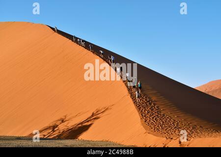 SOSSUSVLEI, NAMIBIE - 29 JANVIER 2016 : les touristes grimpent la dune No.45 la dune la plus populaire dans le monde entier, Namibie, Afrique Banque D'Images