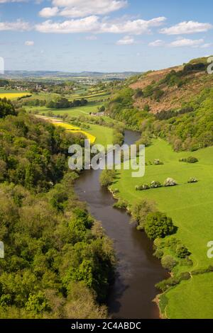 Vue sur la vallée de Wye Symonds Yat Rock, Symonds Yat, forêt de Dean, Herefordshire, Angleterre, Royaume-Uni, Europe