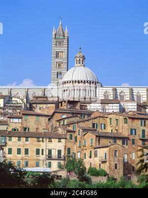 Vue sur la vieille ville et le Duomo di Siena (cathédrale de Sienne), Sienne (Sienne), province de Sienne, région Toscane, Italie