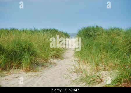 Remblai sur la plage à Harlesiel, Mer du Nord, Saxe, Allemagne, Europa