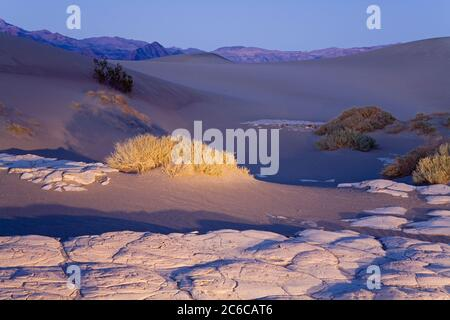 La boue séchée dans la télévision Mesquite Sand Dunes, Death Valley National Park, California, USA, Amérique du Nord