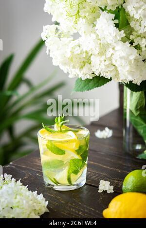 Boisson rafraîchissante au citron, citron vert et menthe, limonade à la glace