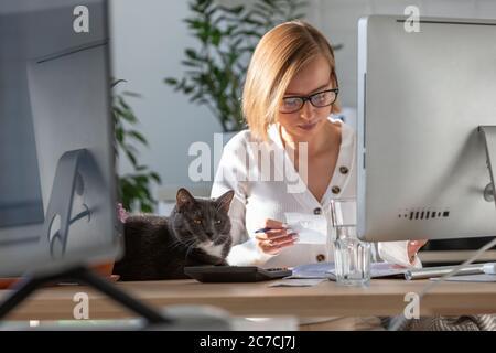 Femme utilisant la calculatrice pour calculer la facture, la planification des dépenses tout en travaillant sur le bureau à domicile, chat noir endormi à proximité sur la table. Unité commerciale