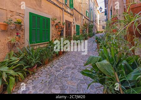 Vieille ville, allée, pots de fleurs, mur de maison, Valldemossa, île de Majorque,