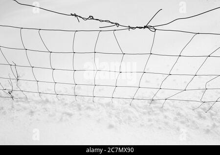 Filets et neige en fil métallique comme composition abstraite minimaliste simple et propre - silhouette de lignes sombres sur fond blanc et lumineux