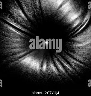 Fauteuil en cuir noir et blanc, photographie d'art, bouton