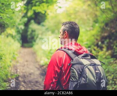 Vue rapprochée arrière de l'homme (section supérieure) isolé dans un cadre rural en marchant avec sac à dos sur un chemin boisé en été. Banque D'Images