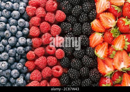 Baies de gros plan mélange coloré de fraises, bleuets, framboises et mûres Banque D'Images