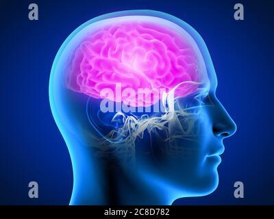 la 3d a rendu l'illustration médicale précise d'un homme ayant un cerveau douloureux. Banque D'Images
