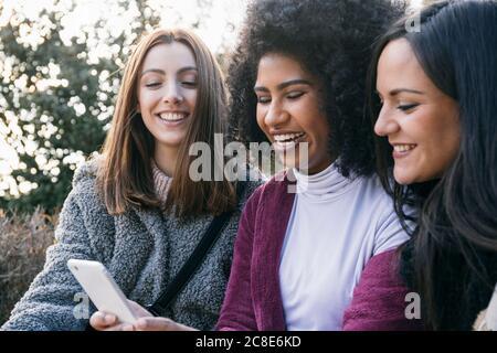 Jeune femme joyeuse montrant le smartphone à des amis pendant assis dans le parc