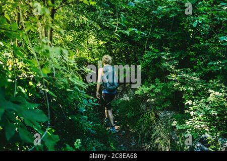 Femme avec randonnée à dos au milieu des arbres et des plantes en forêt, Lecco, Italie