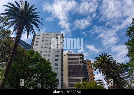 Gratte-ciels et rues du quartier des affaires d'Auckland, Nouvelle-Zélande