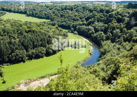 Vue imprenable sur River Wye dans Upper Wye gorge SSSI depuis Symonds Yat Rock, Forest of Dean, Gloucestershire Herefordshire Border, Angleterre, Royaume-Uni, Grande-Bretagne