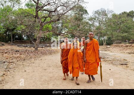 ANGKOR WAT, CAMBODGE - 25 FÉVR. 2015 : Angkor Wat jeune moine bouddhiste marchant dans la jungle. Célèbre monument, lieu de culte et de tourisme populaire d