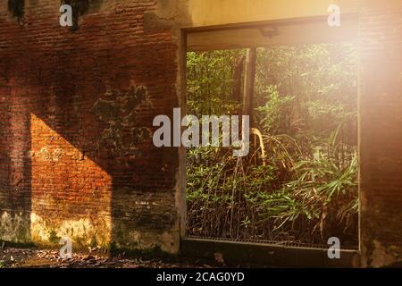 Un intérieur abandonné de l'ancien fort, vue de l'intérieur donnant sur l'extérieur, sunbeam brille à travers la jeune forêt verte et la fenêtre ruinée dans un vieux Wal de brique Banque D'Images