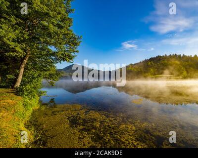 Matin brouillard brillant au-dessus de la surface de l'eau du lac Mrzla Vodica en Croatie Europe campagne campagne-côté
