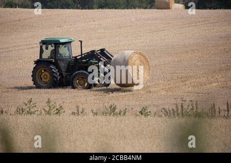 Westerham, Kent, le 12 août 2020, après avoir pris le foin pendant environ trois jours, un agriculteur de Westerham Kent charge ses balles de foin sur une remorque à l'aide d'un tracteur prêt à être retiré du champ. Le foin peut être récolté deux à trois fois par an, la première coupe ayant généralement le rendement le plus élevé. Crédit : Keith Larby/Alay Live News