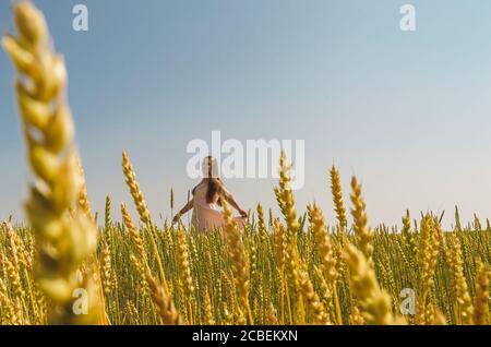 Une femme blanche dans une sundress rose est au milieu d'un champ avec des oreilles de blé. Banque D'Images