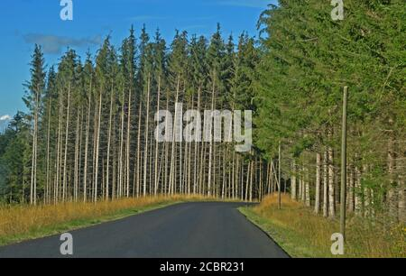 Route de montagne, Livradois-Forez, Puy-de-Dôme, Auvergne, massif-Central, France