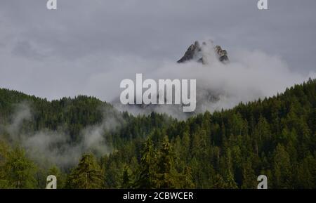 Les nuages bas de soirée descendent au-dessus des bois et enveloppent le sommets de montagne Banque D'Images
