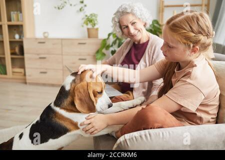 Portrait de jolie fille jouant avec une vue latérale aux tons chauds chien tout en appréciant un séjour en famille dans un intérieur confortable Banque D'Images