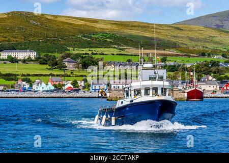 Excursion en bateau au départ du port de Dingle pour visiter et observer les dauphins de Fungie avec le village de Dingle en arrière-plan. Co Kerry, Irlande Banque D'Images