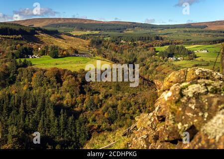 Arbres de couleur automnale dans la vallée du parc forestier de Glenariff. Vue depuis le sommet des falaises environnantes, Comte Antrim, Irlande du Nord Banque D'Images