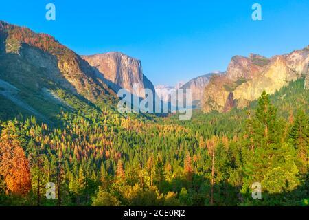 Voyagez en toute liberté dans le parc national de Yosemite à l'emblématique vue sur le tunnel. Vue sur le célèbre El Capitan et le demi-dôme. Vacances américaines d'été