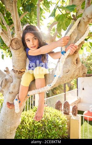 Angle bas de la petite fille positive assise sur la branche de l'arbre et se préparer au saut avec la corde tout en s'amusant jardin vert en été