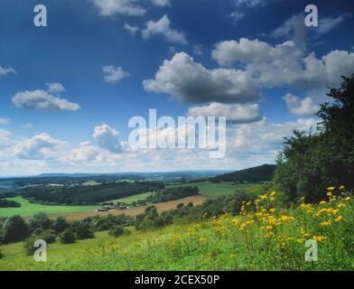 La vue de Newlands Corner, région de Surrey Hills d'une beauté naturelle exceptionnelle. North Downs, Surrey, Angleterre, Royaume-Uni Banque D'Images