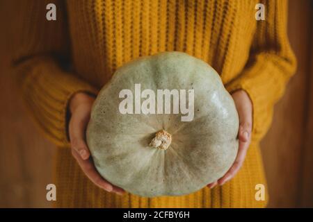 Chandail tricoté jaune tenant la citrouille verte sur fond rustique en bois. Bonjour automne et heureux Thanksgiving, célébrant les vacances d'automne a