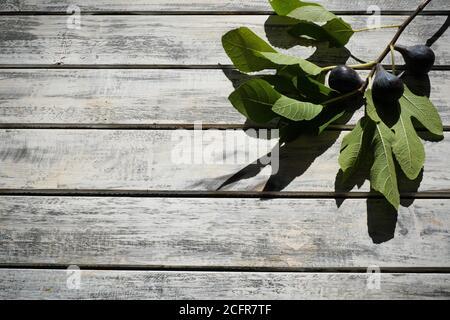 figues mûres joliment disposées sur une table en bois chic et blanche avec branche de figues, espace pour les textes, plat
